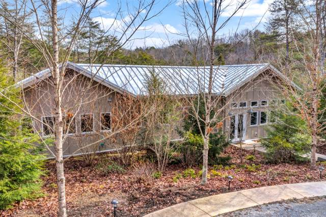 252 Bobcat Hollow Rd, Coalmont, TN 37313 (MLS #RTC2114482) :: Fridrich & Clark Realty, LLC