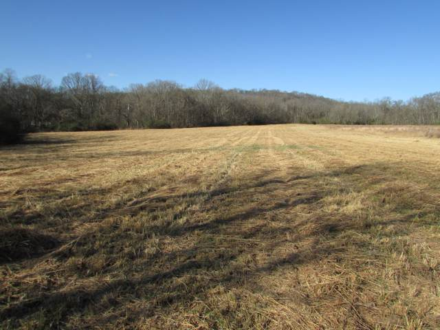 0 Rock Springs Road, Columbia, TN 38401 (MLS #RTC2115156) :: Ashley Claire Real Estate - Benchmark Realty