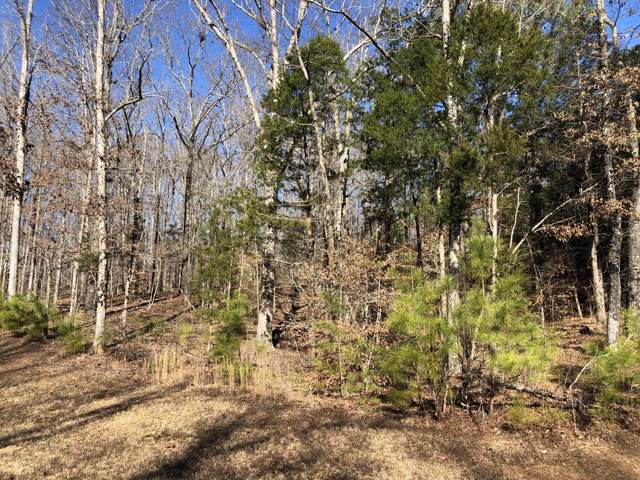 991 Strike King Dr, Cedar Grove, TN 38321 (MLS #RTC2115376) :: FYKES Realty Group