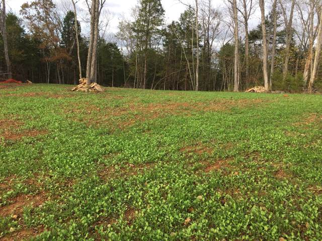 0 Rummage Rd, Columbia, TN 38401 (MLS #RTC2115468) :: Armstrong Real Estate