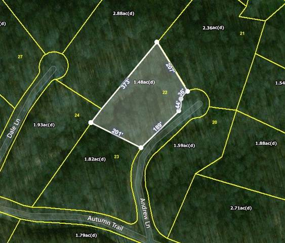22 Andrew Ln, Dover, TN 37058 (MLS #RTC2115750) :: Village Real Estate