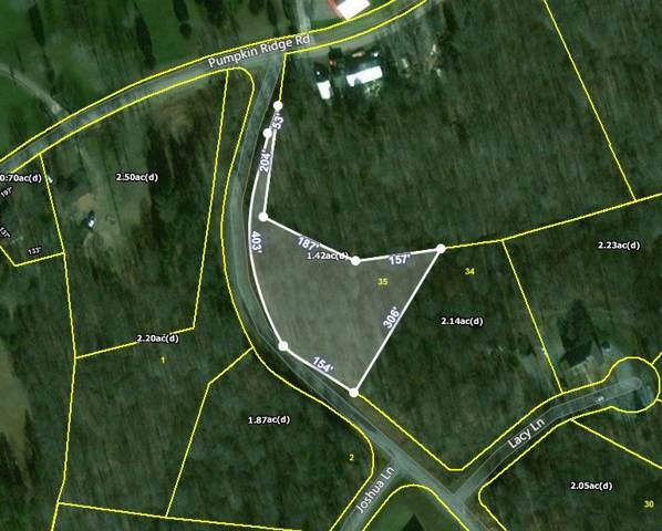 35 Autumn Trl, Dover, TN 37058 (MLS #RTC2115760) :: Village Real Estate