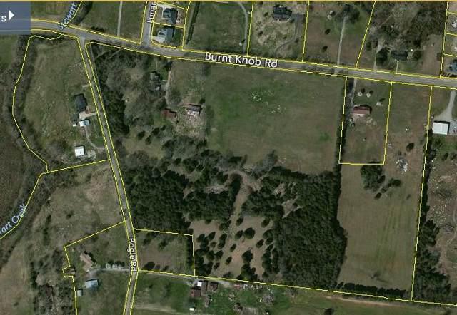 7241 Burnt Knob Rd, Smyrna, TN 37167 (MLS #RTC2116207) :: Oak Street Group
