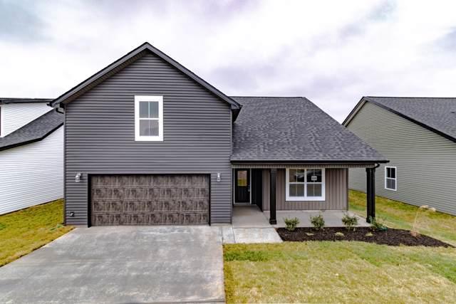 359 Eagles Bluff, Clarksville, TN 37043 (MLS #RTC2116228) :: REMAX Elite