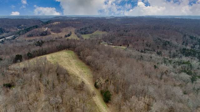 394 Young Hollow Rd, Pulaski, TN 38478 (MLS #RTC2116275) :: Stormberg Real Estate Group