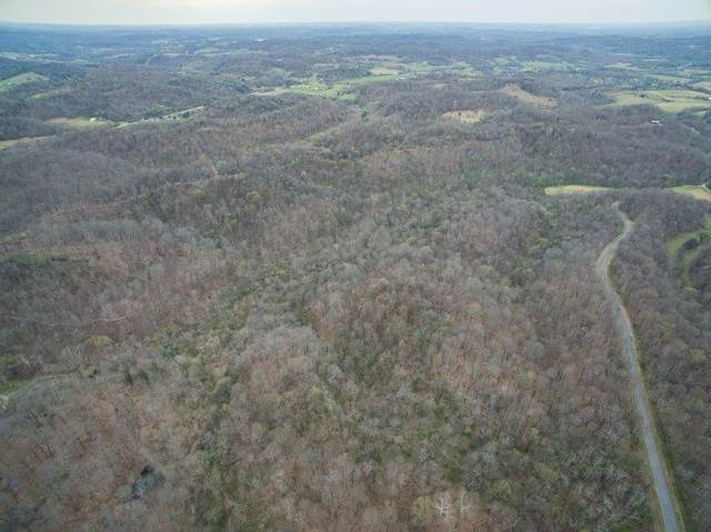 34 Haywood Hollow Rd, Columbia, TN 38401 (MLS #RTC2117101) :: REMAX Elite