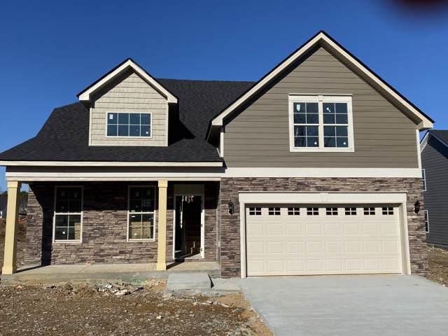 304 Big Son Lane, Lot 103, Smyrna, TN 37167 (MLS #RTC2117576) :: REMAX Elite