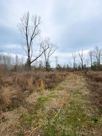 750 Joines Rd, Smithville, TN 37166 (MLS #RTC2117862) :: Village Real Estate