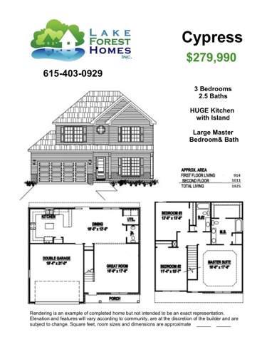 111 Kalman Minuskin Blvd, La Vergne, TN 37086 (MLS #RTC2117866) :: Fridrich & Clark Realty, LLC