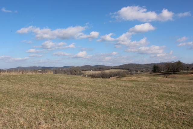 0 Sam Beasley Road, Hartsville, TN 37074 (MLS #RTC2118144) :: Maples Realty and Auction Co.