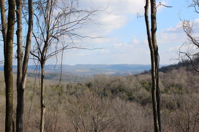 0 Ed Seay Gregory Lane, Hartsville, TN 37074 (MLS #RTC2118208) :: Maples Realty and Auction Co.