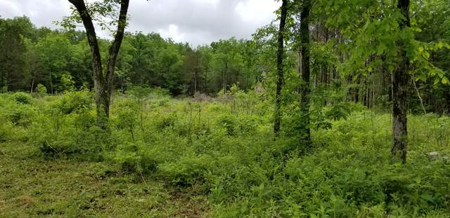 0 Tyree Rd, Lewisburg, TN 37091 (MLS #RTC2120976) :: Village Real Estate