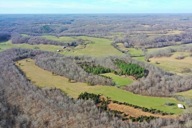 3599 Big Dry Creek Rd, Pulaski, TN 38478 (MLS #RTC2121966) :: REMAX Elite