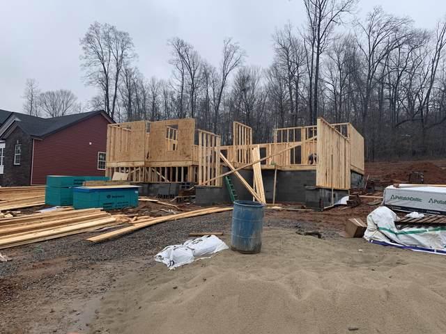 241 Timber Springs, Clarksville, TN 37040 (MLS #RTC2122059) :: Village Real Estate
