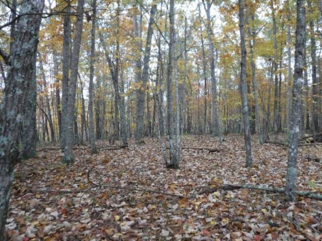 12 .74Ac Arrowhead Rd, Moss, TN 38575 (MLS #RTC2122428) :: Adcock & Co. Real Estate