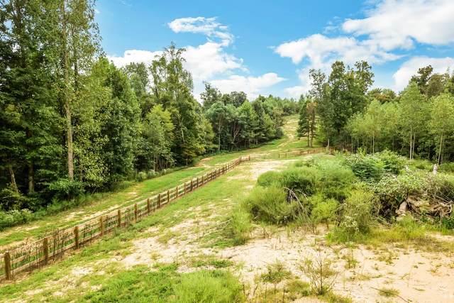 0 Clay Lick Rd, Whites Creek, TN 37189 (MLS #RTC2122837) :: Village Real Estate