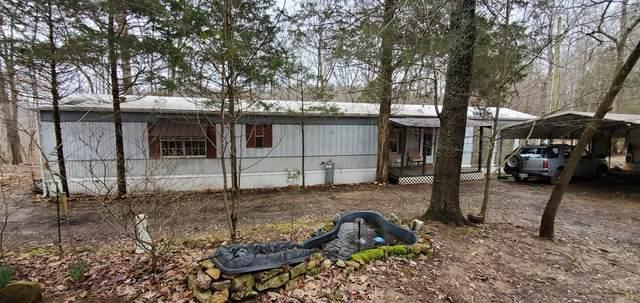 4365 Chapel Hill Rd, Southside, TN 37171 (MLS #RTC2122994) :: John Jones Real Estate LLC