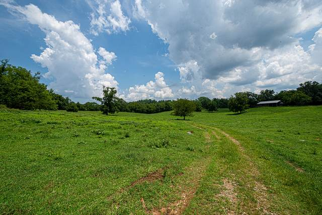 0 Short School Rd, Pulaski, TN 38478 (MLS #RTC2123582) :: Fridrich & Clark Realty, LLC