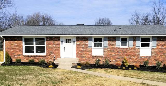 113 La Vista Dr, Hendersonville, TN 37075 (MLS #RTC2123848) :: Village Real Estate