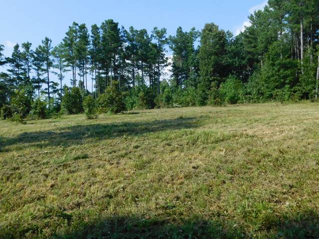 4430 Poplar Springs Rd., Indian Mound, TN 37079 (MLS #RTC2123923) :: RE/MAX Homes And Estates