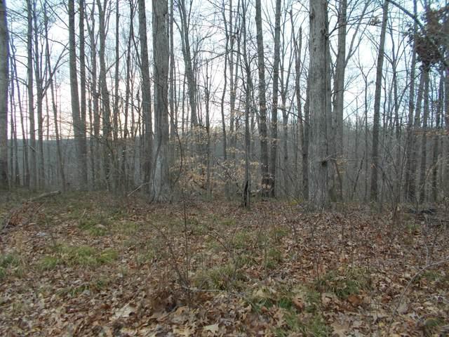 0 Trailwood Ct, Joelton, TN 37080 (MLS #RTC2124671) :: Village Real Estate