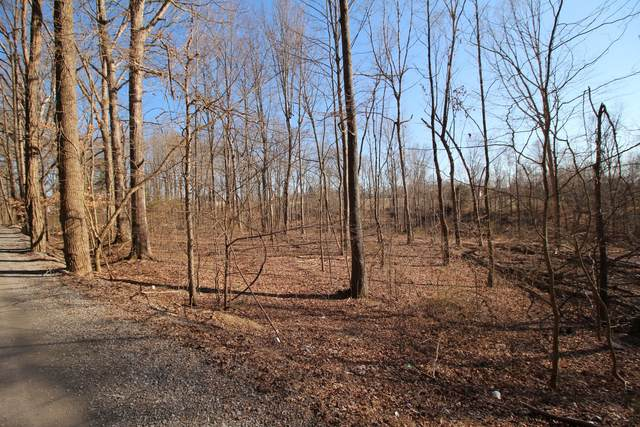 1 Carlene Jones Rd, Westmoreland, TN 37186 (MLS #RTC2125103) :: Village Real Estate