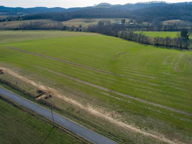 4 Hearn Hill Rd, Watertown, TN 37184 (MLS #RTC2125498) :: Nashville on the Move