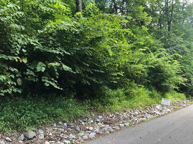 125 Bay Dr, Lancaster, TN 38569 (MLS #RTC2125641) :: The Group Campbell