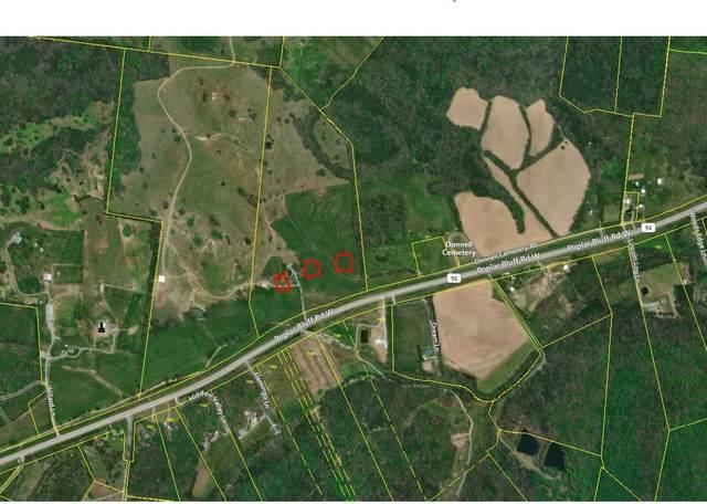 2202 Poplar Bluff Rd W, Auburntown, TN 37016 (MLS #RTC2125668) :: Village Real Estate