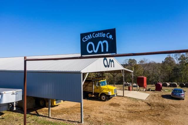 148 Williams Hill Road, Leoma, TN 38468 (MLS #RTC2125688) :: Team Wilson Real Estate Partners