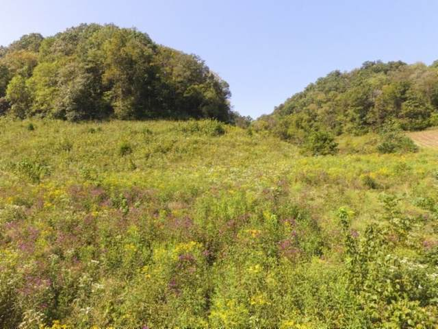 72 .68Ac South Fork Road, Whitleyville, TN 38588 (MLS #RTC2125863) :: Felts Partners