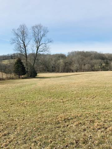 0 Williamson Branch, Vanleer, TN 37181 (MLS #RTC2126000) :: Ashley Claire Real Estate - Benchmark Realty