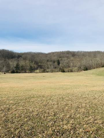 0 Williamson Branch Rd, Vanleer, TN 37181 (MLS #RTC2126004) :: Ashley Claire Real Estate - Benchmark Realty