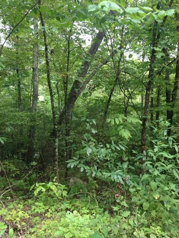 0 Whites Creek Pike, Whites Creek, TN 37189 (MLS #RTC2126525) :: Village Real Estate