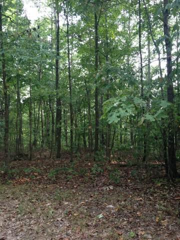 0 Swindle Rd, Whites Creek, TN 37189 (MLS #RTC2126538) :: Village Real Estate