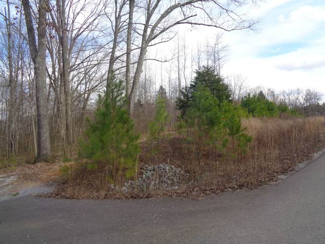 0 Belew Drive, Lawrenceburg, TN 38464 (MLS #RTC2127037) :: REMAX Elite