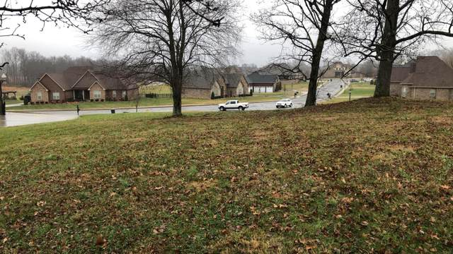 316 Bryson Ln, Clarksville, TN 37043 (MLS #RTC2127939) :: Village Real Estate