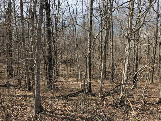 0 Golden Pointe Rd. N, Spencer, TN 38585 (MLS #RTC2128235) :: Stormberg Real Estate Group