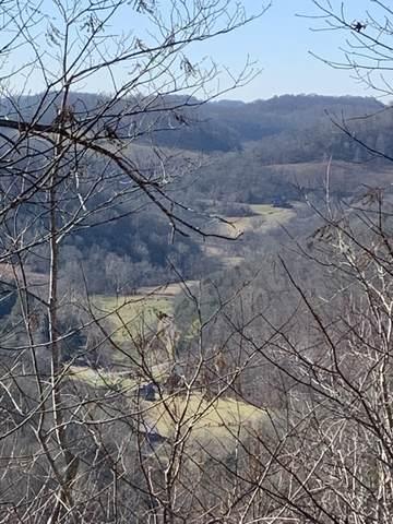 1430 Highland Mtn Rd, Livingston, TN 38570 (MLS #RTC2128633) :: Village Real Estate