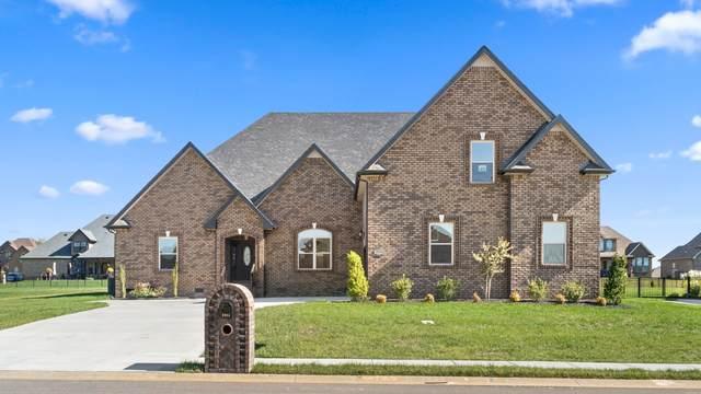 49 Hartley Hills, Clarksville, TN 37043 (MLS #RTC2129648) :: John Jones Real Estate LLC