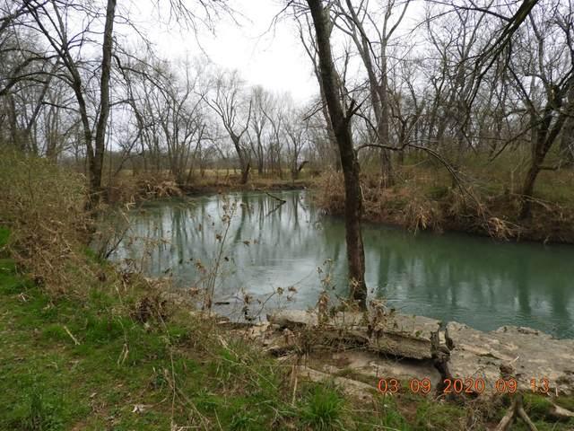 117 Creek Side Dr, Pulaski, TN 38478 (MLS #RTC2129953) :: Nashville on the Move