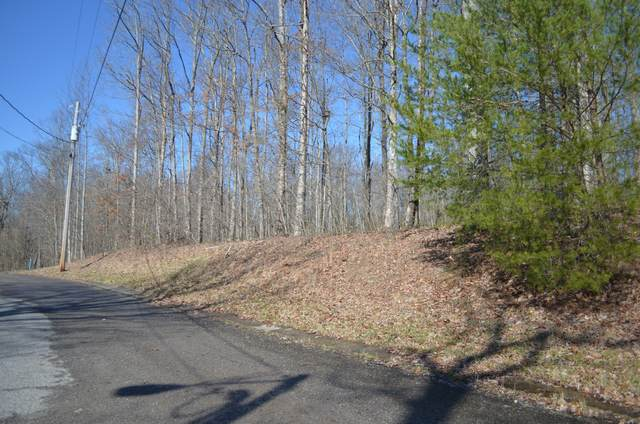 0 Bear Ct Lot 19, Monteagle, TN 37356 (MLS #RTC2130059) :: Stormberg Real Estate Group