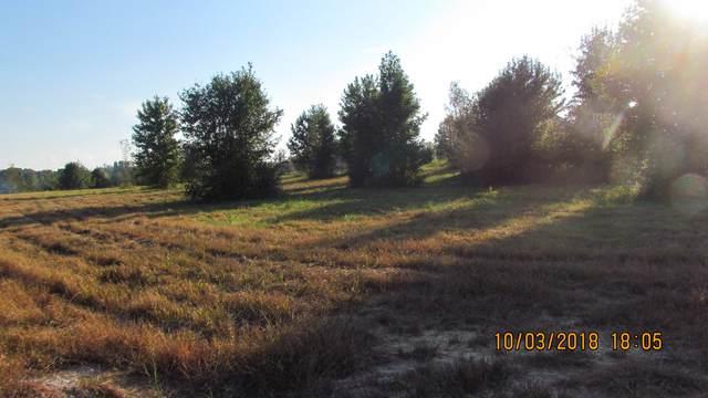0 Aberdeen Ave, Hillsboro, TN 37342 (MLS #RTC2130071) :: Village Real Estate