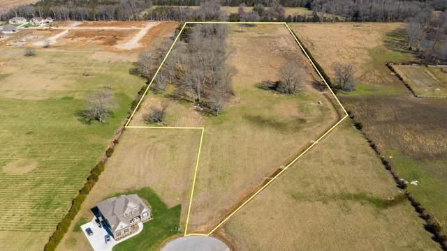 1013 Rhonda Dr, Christiana, TN 37037 (MLS #RTC2130187) :: Village Real Estate