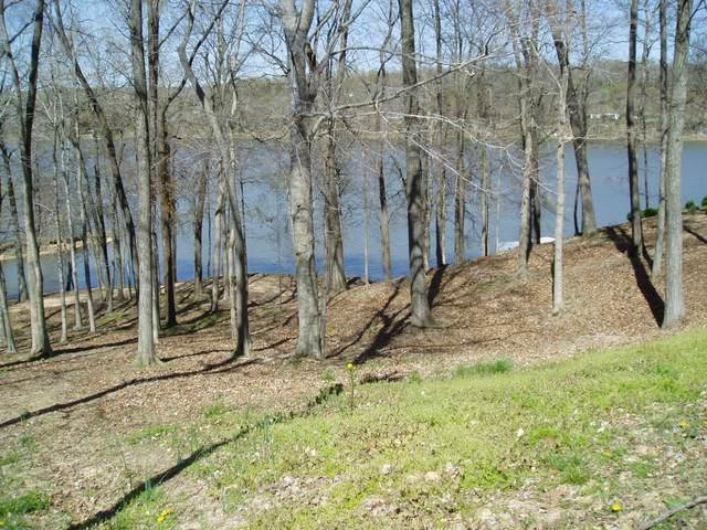 844 Stirling Rd., Camden, TN 38320 (MLS #RTC2130330) :: Hannah Price Team