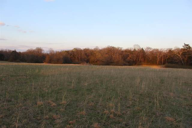 1 Betty Ford Road, Murfreesboro, TN 37130 (MLS #RTC2130684) :: Maples Realty and Auction Co.