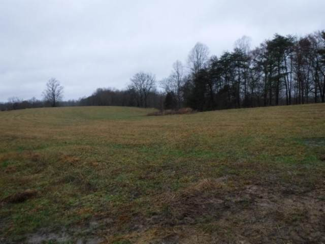 41 .69Ac Arrowhead Road, Moss, TN 38575 (MLS #RTC2130811) :: Adcock & Co. Real Estate