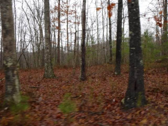 5 .02Ac Arrowhead Road, Moss, TN 38575 (MLS #RTC2130824) :: Adcock & Co. Real Estate