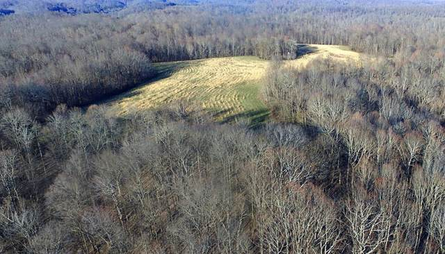 0 Panhandle Road, Wartrace, TN 37183 (MLS #RTC2131181) :: FYKES Realty Group