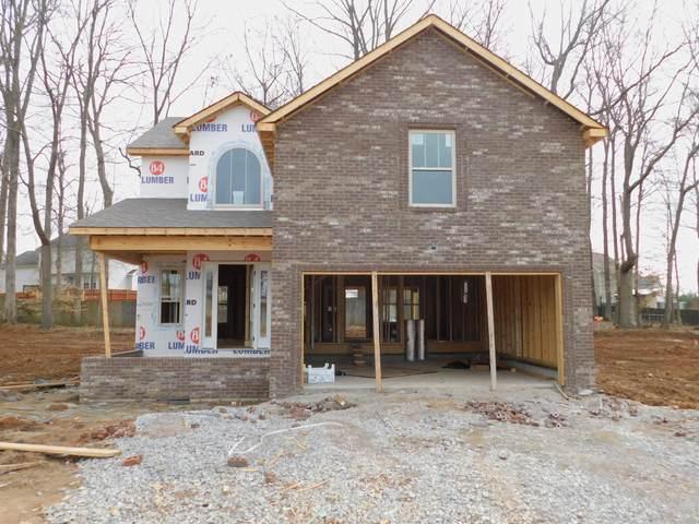 1175 Elizabeth Lane - Lot 29, Clarksville, TN 37042 (MLS #RTC2131633) :: RE/MAX Homes And Estates